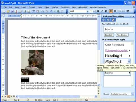 Converting A Microsoft Word Document 2003 And 2007 Into A PDF