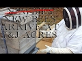 Our New Bees are NOT Newbies!