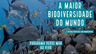 Brasil é o país mais biodiverso do mundo e estamos desperdiçando isso
