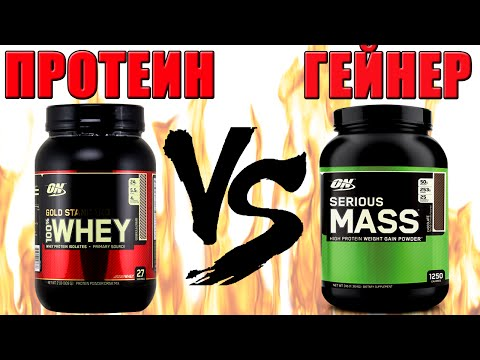 What is the best protein or Gainer