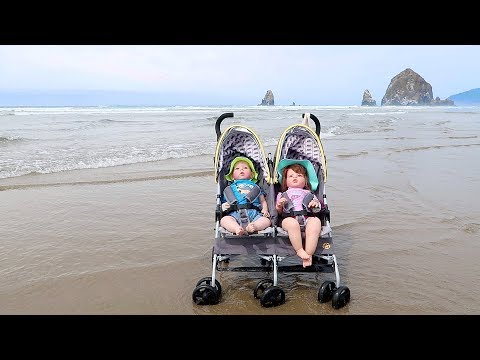 Reborn Toddler Twins Going To The Beach With Double Stroller