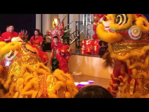 Baby Lion in Chinese Lion Dance