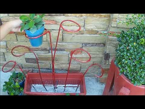 DIY Iron Plant / Flower Pot Stand Ideas for Indoor Using Money Plant