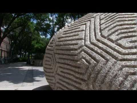 """Ridge and Furrow"" by Peter Randall-Page on YouTube"