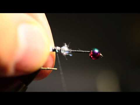Fritz cats whisker - Great fly for the put and take fishing