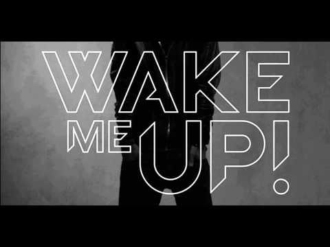 Avicii ft. Aloe Blacc - Wake Me Up (Radio Edit)