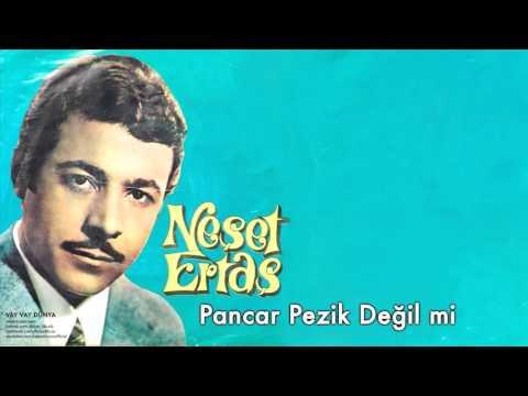 Türkü - Pancar Pezik Değil Mi mp3 indir