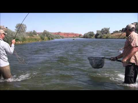 The Humble Fly Shop Presents- Thermopolis, Wyoming