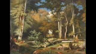 Brahms: Serenade no. 1 op. 11 in D major, McGegan, Philharmonia Baroque Orchestra