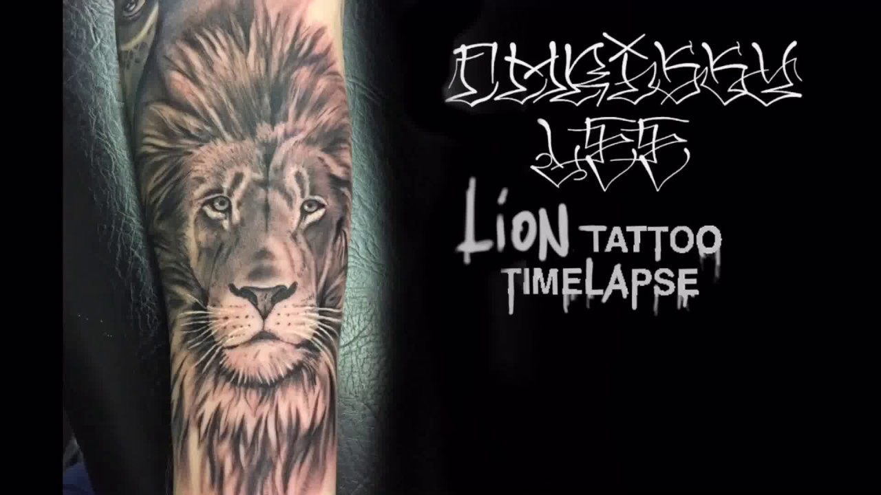 53b23b64422a1 TATTOO TIME LAPSE / CHRISSY LEE / lion portrait - YouTube