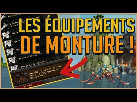 LES ÉQUIPEMENTS DE MONTURE DU PATCH 82