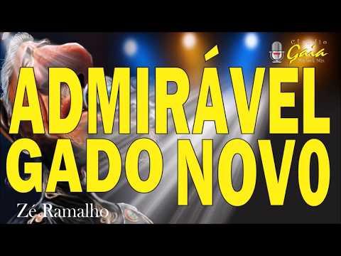 ADMIRAVEL GADO NOVO = Zé Ramalho - Karaoke