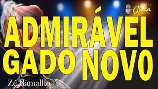 ADMIRAVEL GADO NOVO=Zé Ramalho - karaoke