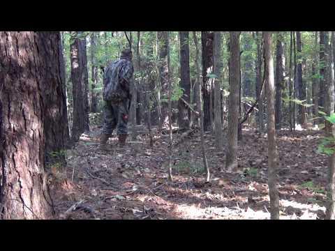 Hog Hunting In Alabama