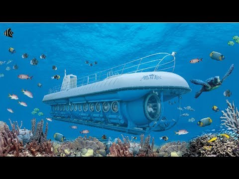 Atlantis Submarines Aruba - De Palm Tours