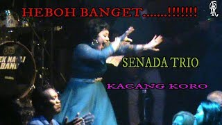 Download Mp3 Senada Trio Kacang Koro Cipt:jaga Depari  Live Aek Nauli Cafe
