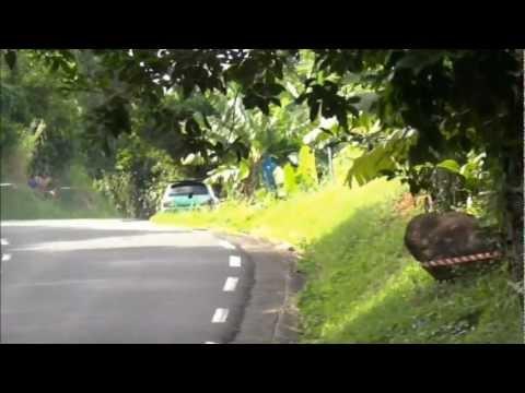 Course de cote de bananier 2012 (HD)