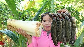 Awesome Cooking Fish W / Heart Of Coconut Tree Recipe - Show Eating Delicious - Primitive Technology