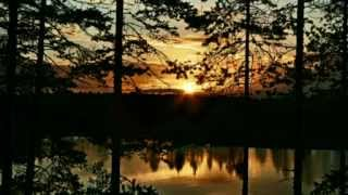 Folkstorm - Zonsondergang