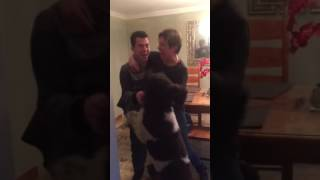 My Mom and Dog Freaked Out When I Got Into Harvard