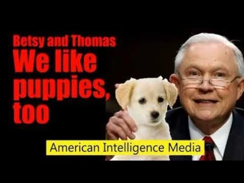 """Disinfo: """"Trust Sessions, Trust Wray."""" Comments By American Intelligence Media"""