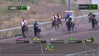 Vidéo de la course PMU PREMIO IMAN SUTIQUE