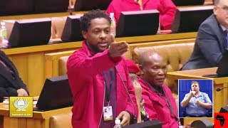 Dr Ndlozi vs DD Mabuza About Pravin And SARS Rouge Unit