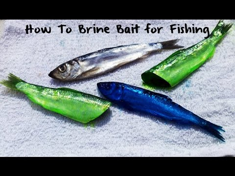How To Brine Bait
