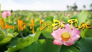 [TỤNG KINH] Bài Số 211 : KINH DI LẶC || Phẩm 39, 40 || Tiếng Phạn cổ