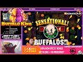 Buffalos!! Super Big Win From Buffalo King!!