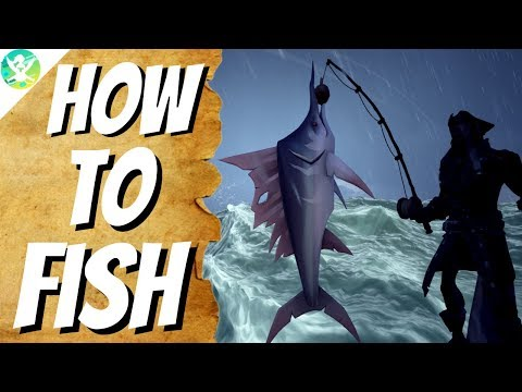 HOW TO FISH | All 10 Fish Species Info | Sea Of Thieves Guide