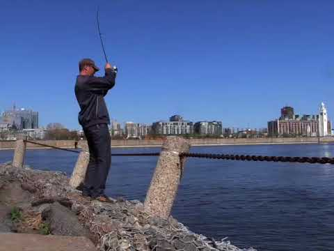 City Fishing In Montreal