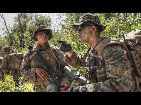 USMC Air Naval Gunfire Liaison Company (ANGLICO) Reconnaissance Training