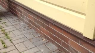 видео Облицовка цоколя плиткой