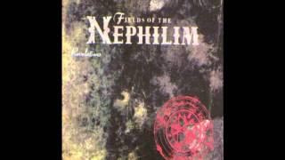 Fields Of The Nephilim - In Every Dream Home A Heartache