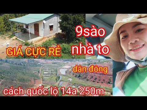 (đã bán )9 sào đất vườn Đắk Nông có nhà to giá chỉ 700tr. cách quốc lộ 250m. đất bằng đẹp.