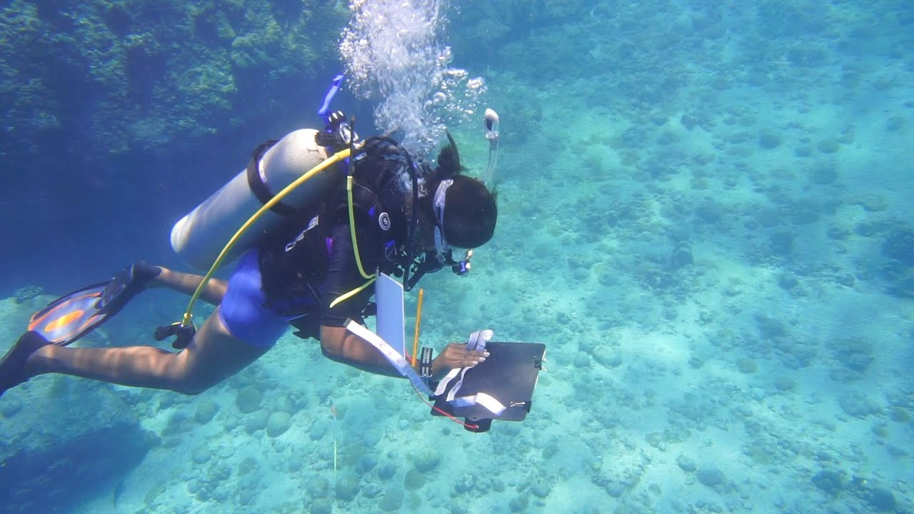 Seychelles: Women at the Forefront of Conservation