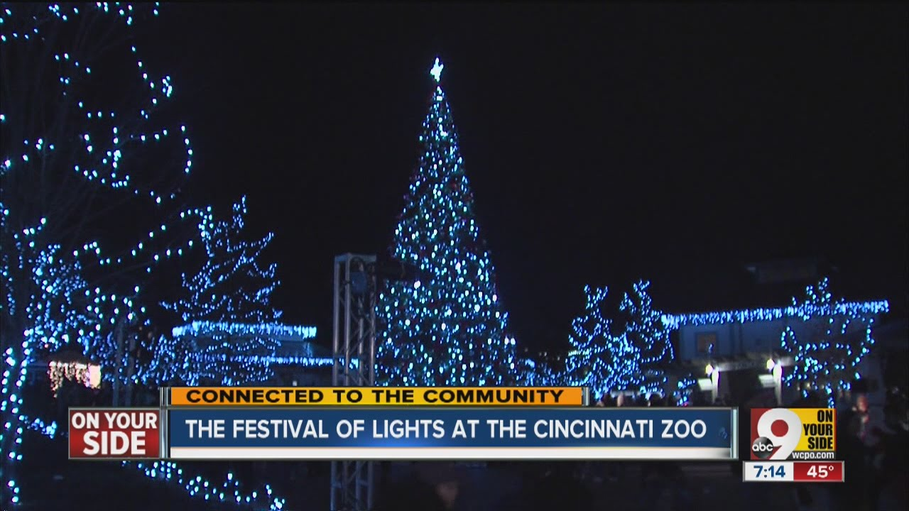 festival of lights hundreds gather to watch christmas tree lighting at cincinnati zoo
