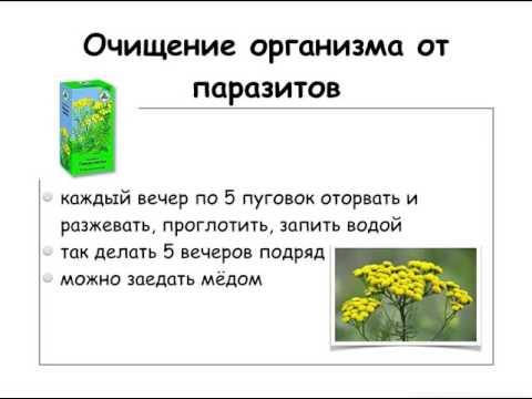 Полное очищение организма - Симптомы и лечение народными