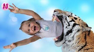 Зоопарк для детей Прогулка в парке с животными Ника кормит и гладит животных Видео для детей