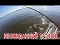 Рыбалка на судака летом О приманках Неожиданный трофей mp3