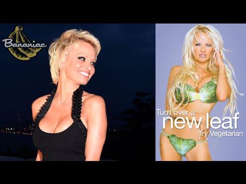 Pamela Anderson | A True Vegan Activist