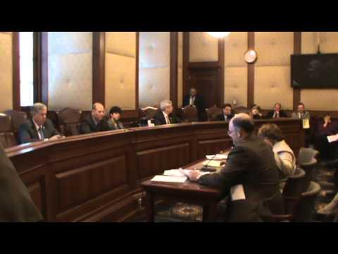 2/11 Senate Hearing on SB531 Minimum Wage Increase Part 4