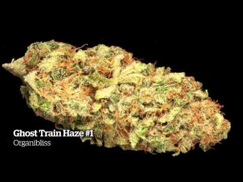 2014 HIGH TIMES Michigan Medical Cannabis Cup Entries Part 2