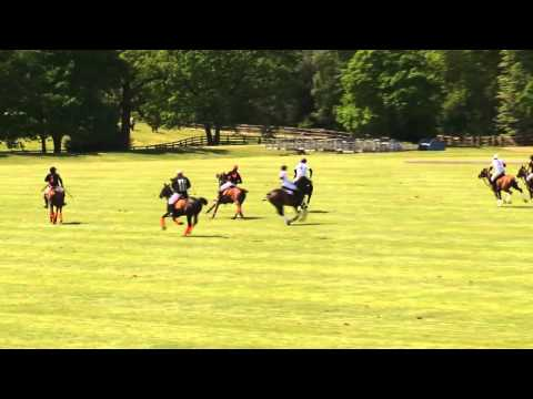 King Power Foxes vs VPS Healthcare Sifani - 19/05/2015