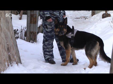 В Казани орудовала банда похитителей людей