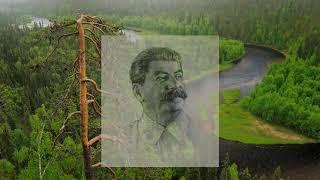 лютая ненависть  Крупской к Сталину и героям  (Меняйлов Алексей)
