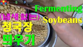 청국장띄우기 Soybeans Fermentation -…