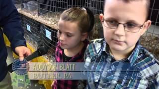 Rabbits At Pa's 100th Farm Show