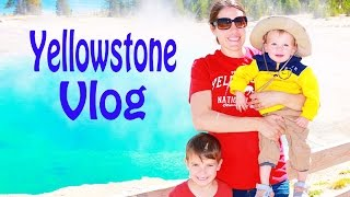 Yellowstone National Park Alltoycollector Vlog Bears Bison Moose Elk Grand Teton Hiking